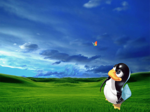 #6 - Click on image to download high res (1600 × 1200px) Linux wallpaper version