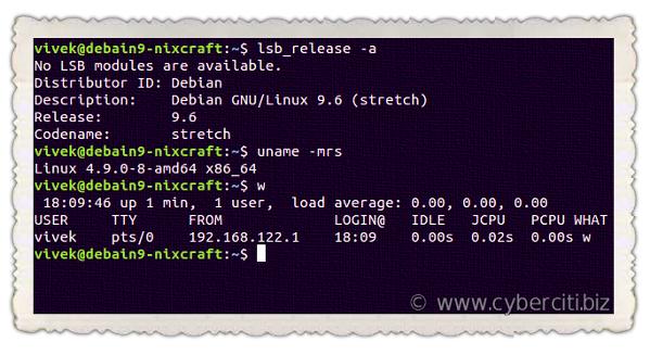 Debian Linux 9.6 released