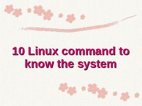 10 Linux command to know the system