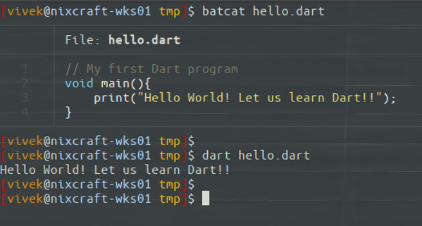 Installing Dart on Linux and set up VIM as IDE with Hello World