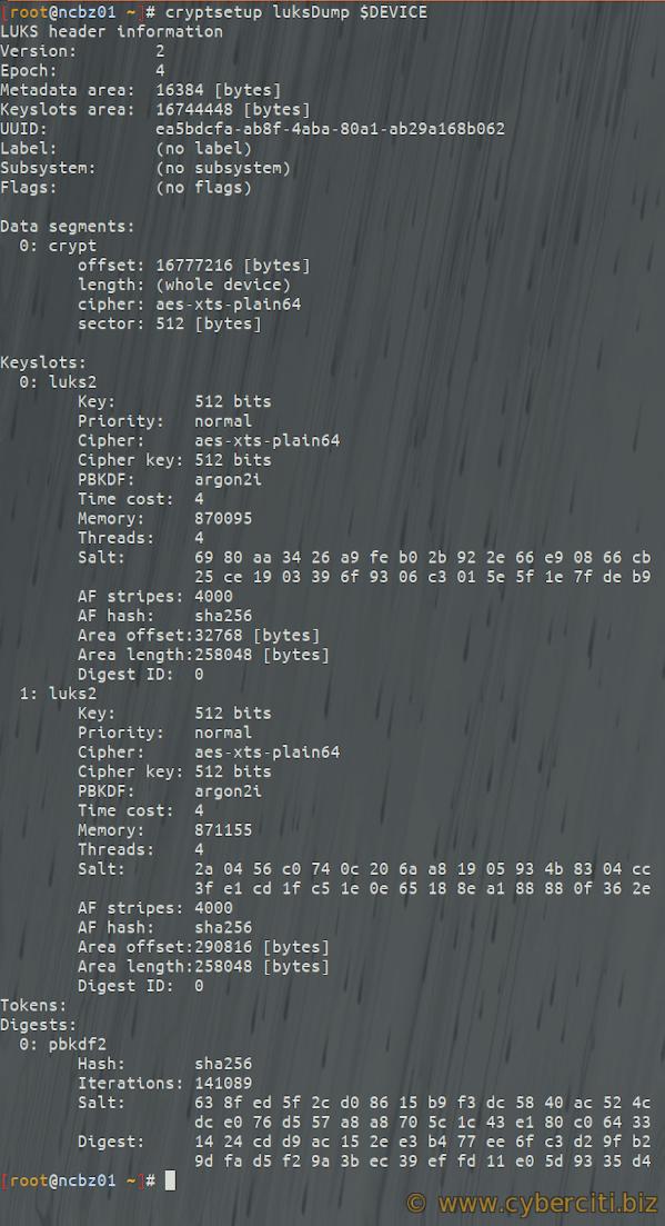 Linux cryptsetup luksformat key file dumping
