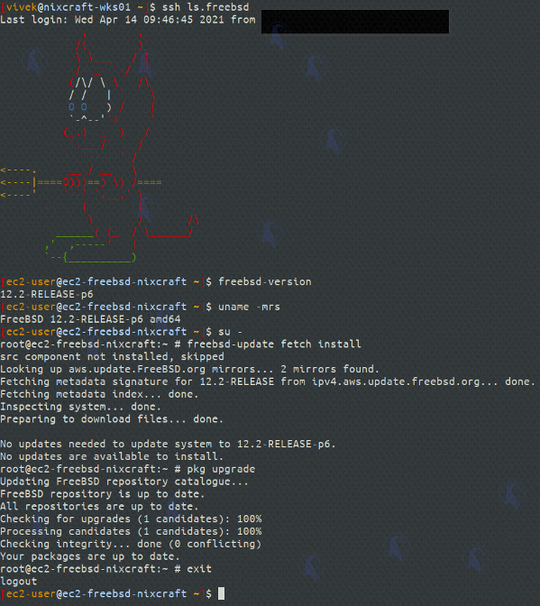 FreeBSD 13 released: Here is how to upgrade FreeBSD 12 to 13