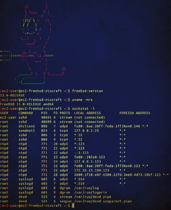FreeBSD 13 verfication