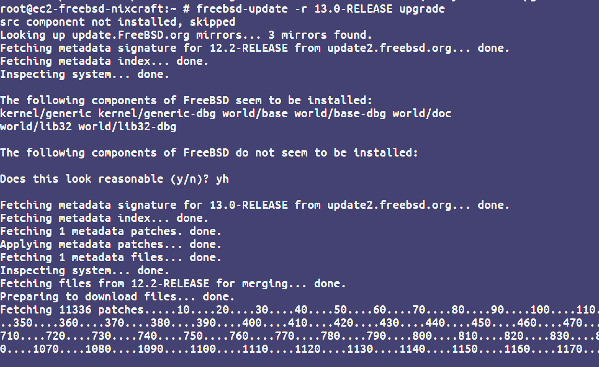 How to ugprade FreeBSD 12 to 13 using the CLI