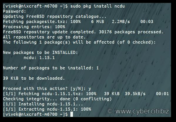 Installing ncdu on Unix FreeBSD system using pkg command