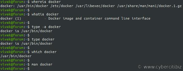 Ruta de información de Docker Linux