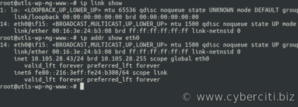 Bash command to know ip address of Linux and Unix server
