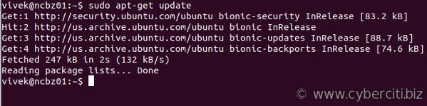 How to install Ubuntu Linux updates via apt-get command line