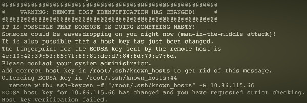 "Fig.01: ""WARNING: REMOTE HOST IDENTIFICATION HAS CHANGED"" error"