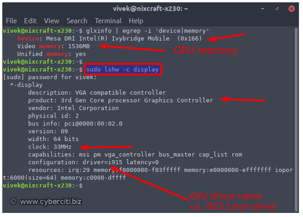 Linux Find Out Video Card GPU Memory RAM Size Using Command