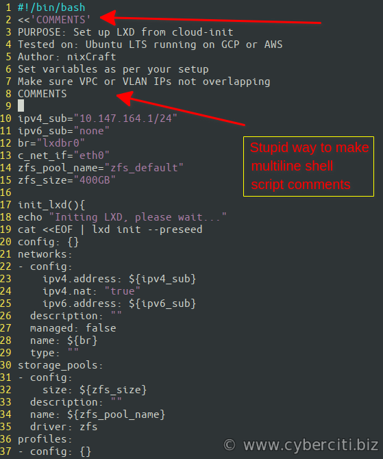 Shell Script Put Multiple Comments under Linux and Unix bash or ksh