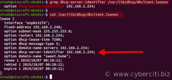 Linux find DHCP server IP address commands