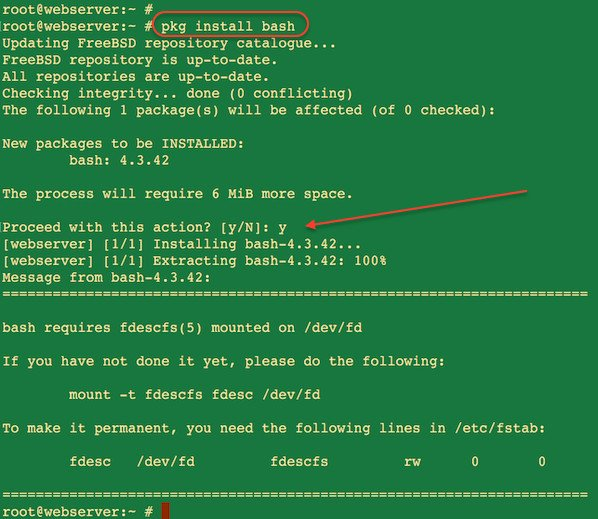Fig.01: Howto Install BASH in FreeBSD using pkg Command
