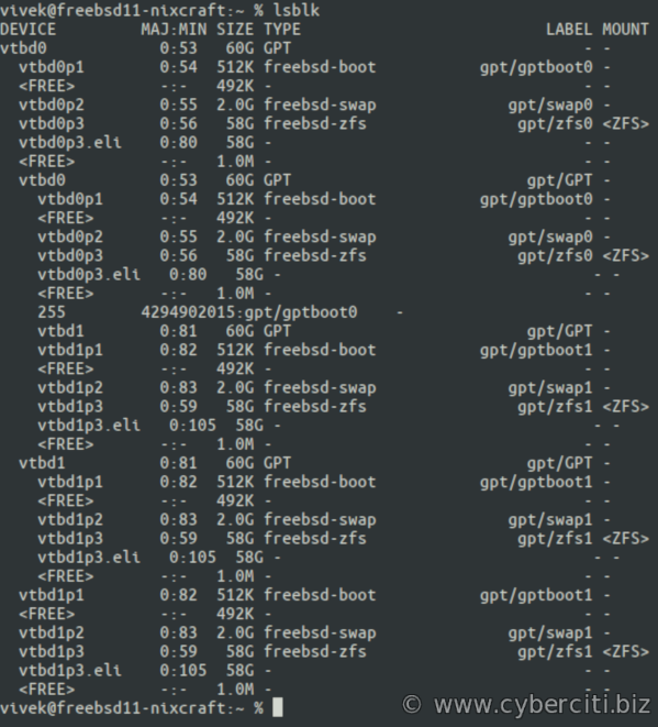 FreeBSD lsblk command outputs