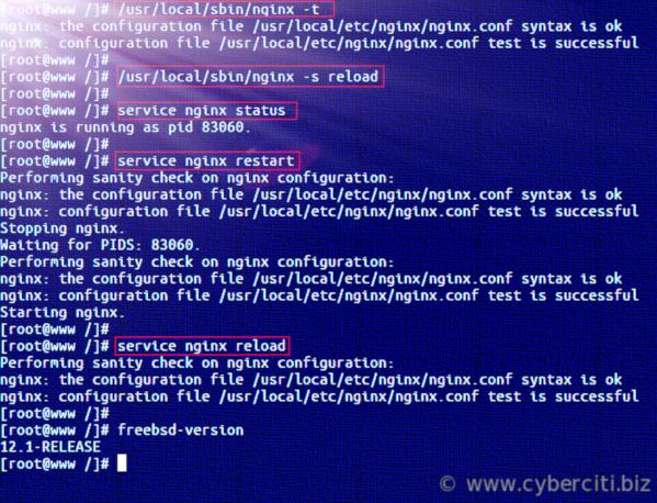FreeBSD Start, Stop, Restart Nginx Web Server Commands