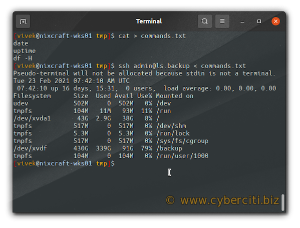 How to run and execute commands using ssh on Linux or Unix
