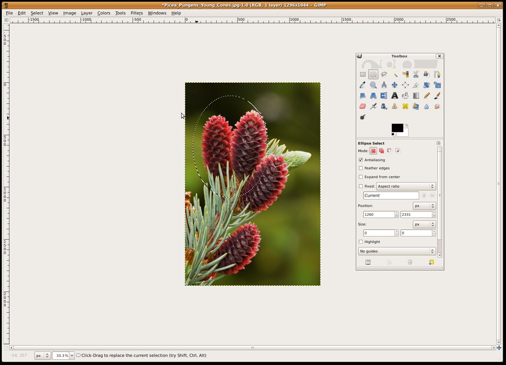 Adobe photoshop for ubuntu 1604 free download