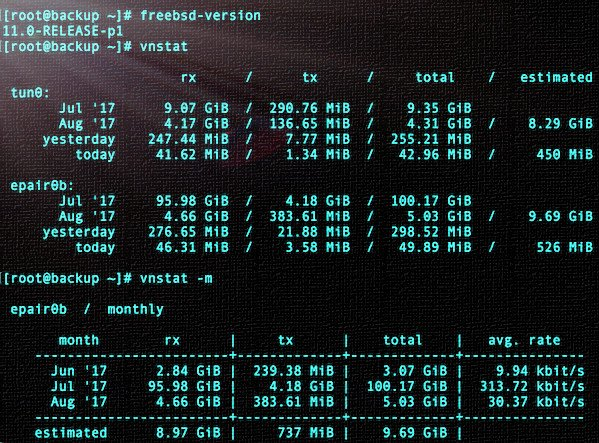 Fig.01: vnstat command in action on my FreeBSD box