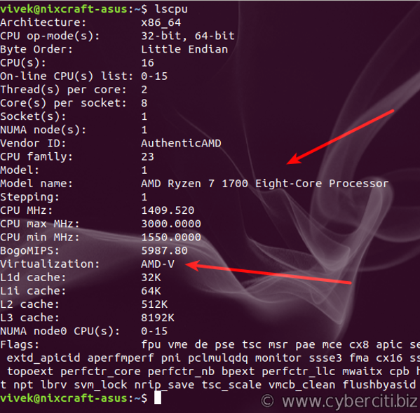 Linux lscpu command to find Virtualization AMD-V support