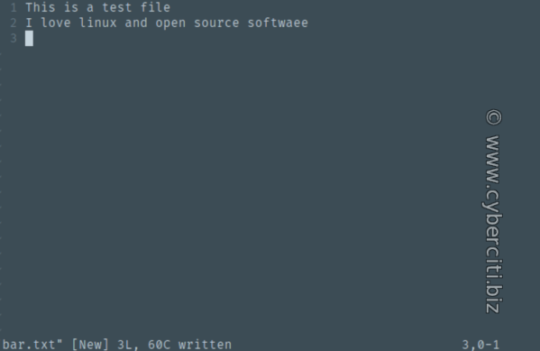 vim save as file command