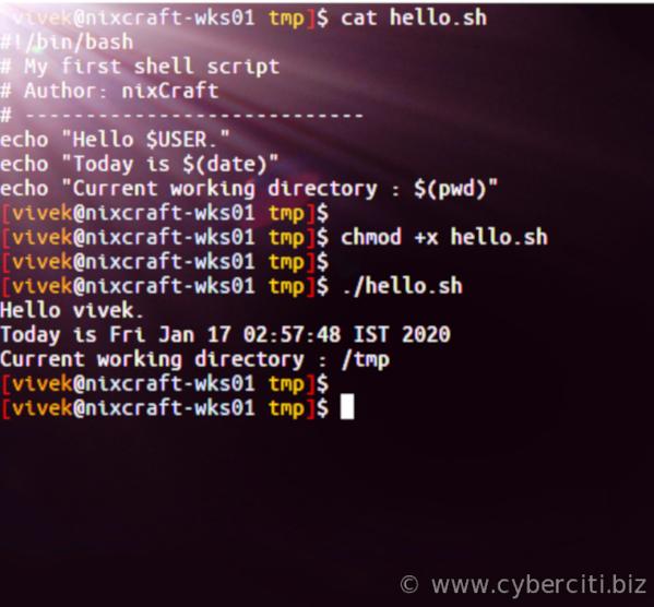 How To Run a Script In Linux - nixCraft
