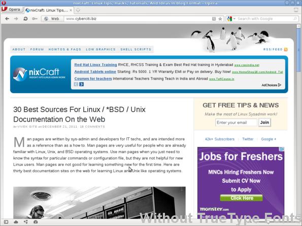 Debian Linux Install Truetype Fonts For Xorg - nixCraft