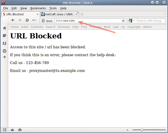 This URL Has Been Blocked - Opera Browser - SquidGuard with Squid 3 Proxy Server
