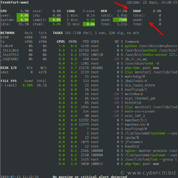 Linux Check Swap Usage Size Using glances command