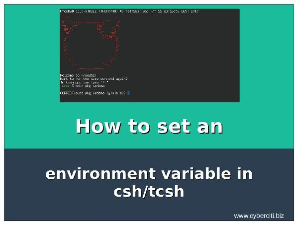 howto- Setting an environment variable in csh