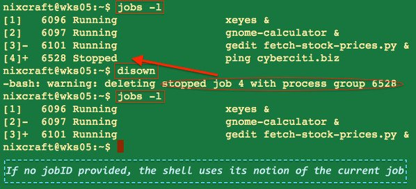 linux unix disown command examples nixcraft