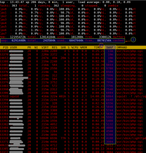 Fig.02 top command - Linux Find Out What Process Are Using Swap Space