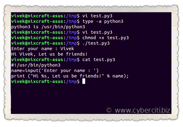 Python raw_input Examples