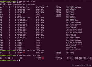 Linux find out which port is open using bash command line