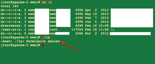 Increase NFS Client Mount Point Security For a Web-Server