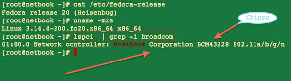 Fig.01: Fedora Linux Find Supported Broadcom  Wireless Devices Name/Chipset