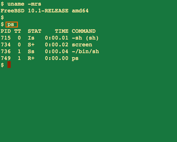 Fig.01: FreeBSD ps command output showing process