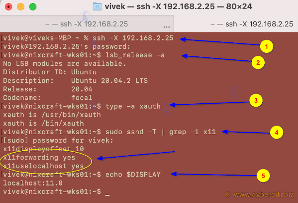 Troublshooting X11 Forwarding on Linux and BSD Unix servers