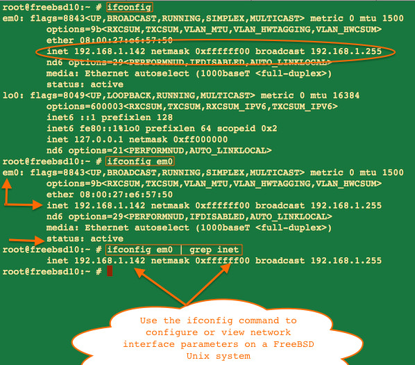 freebsd force dhcp client dhclient to renew ip address to get a