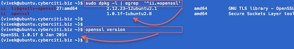 Fig.02: How to Debian/Ubuntu Linux Find OpenSSL Version Command