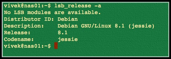Fig.01: Finding Linux distro version and name command