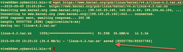 Ubuntu wget a file