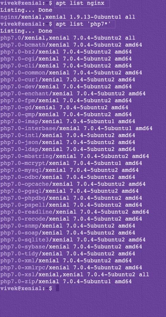 Fig.03: Ubuntu Linux 16.04 LTS display a list of packages satisfy