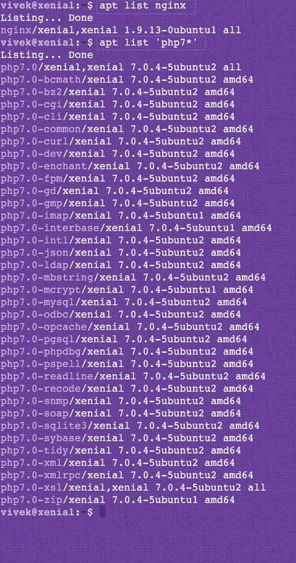Fig.03: Ubuntu Linux 16.04 LTS display a list of packages satisfy