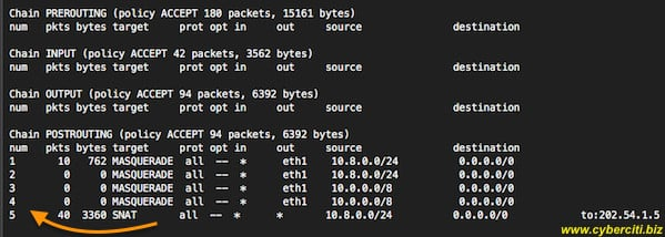 Fig.01: Linux iptables list nat rules command