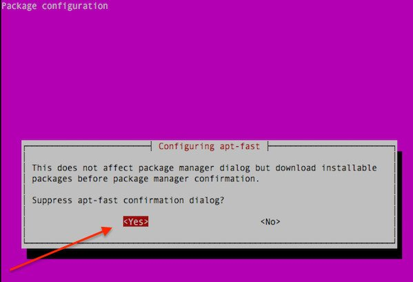 Fig.04: Yes suppress apt-fast download confirmation