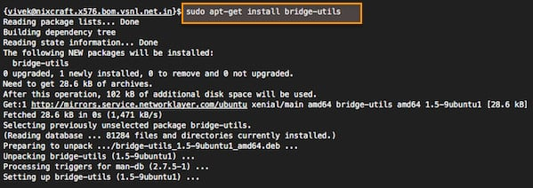 Fig.02: Ubuntu Linux install bridge-utils package