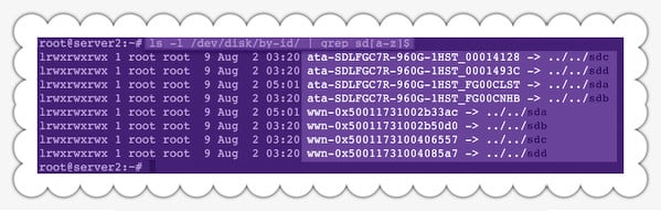 Fig.01: Linux find disk names by serial number using /dev/disk/by-id/