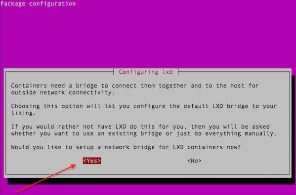 Setup a network bridge for the LXD