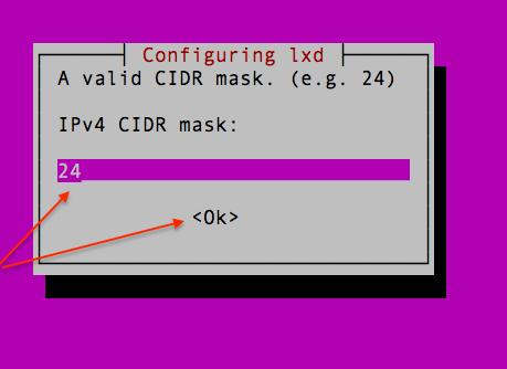 Setup CIDR for the LXD