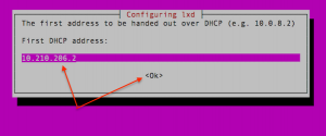 Setup the first IP for the LXD dhcpd